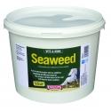 Equimins Seaweed